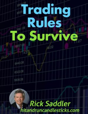 Trading Rules to Survive E-book